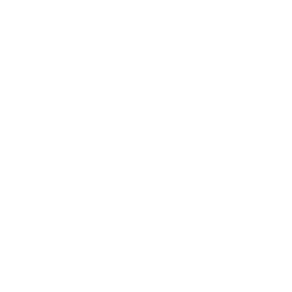 Train Support Services